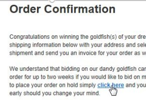 Figure 4.2: Place Fancy Goldfish order on hold