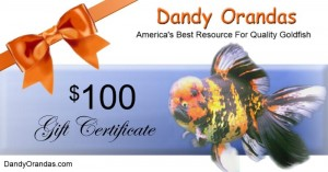 Uploaded image 100giftCert.jpg