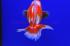 Uploaded image _DSC6695.jpg