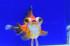 Uploaded image _DSC7405.jpg