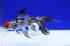 Uploaded image _DSC8092.jpg