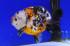 Uploaded image _DSC6045.jpg