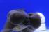 Uploaded image _DSC6143.jpg