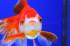 Uploaded image _DSC0089.jpg