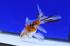 Uploaded image _DSC8577.jpg