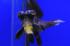 Uploaded image _DSC0800.jpg