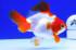 Uploaded image _DSC0886.jpg